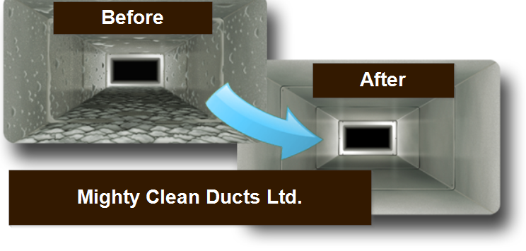 mighty_clean_ducts